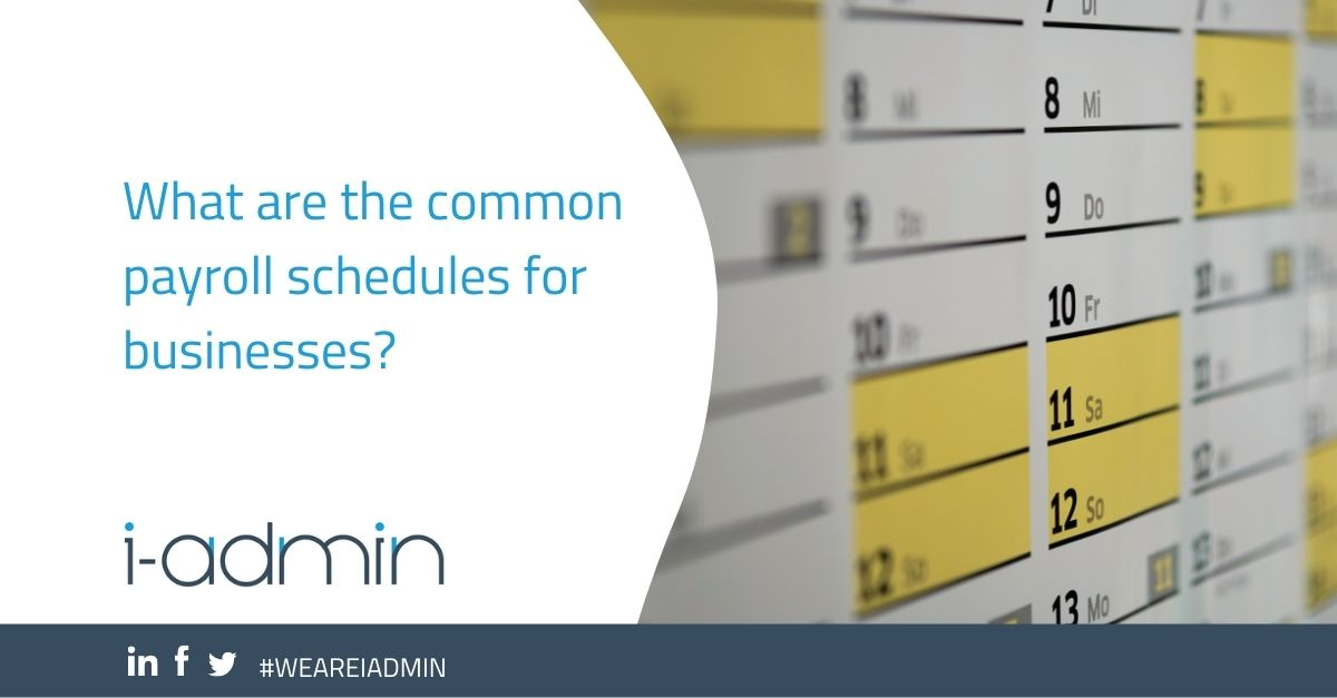 What are the common payroll schedules for businesses?