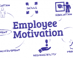 What People Want From Work: Motivation